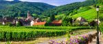 Alsace-Wine-Road-01